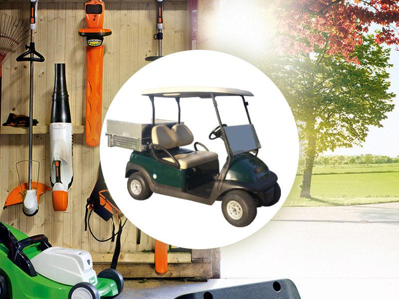 Vehículos Golf