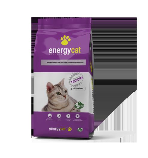 Energycat-4-KG
