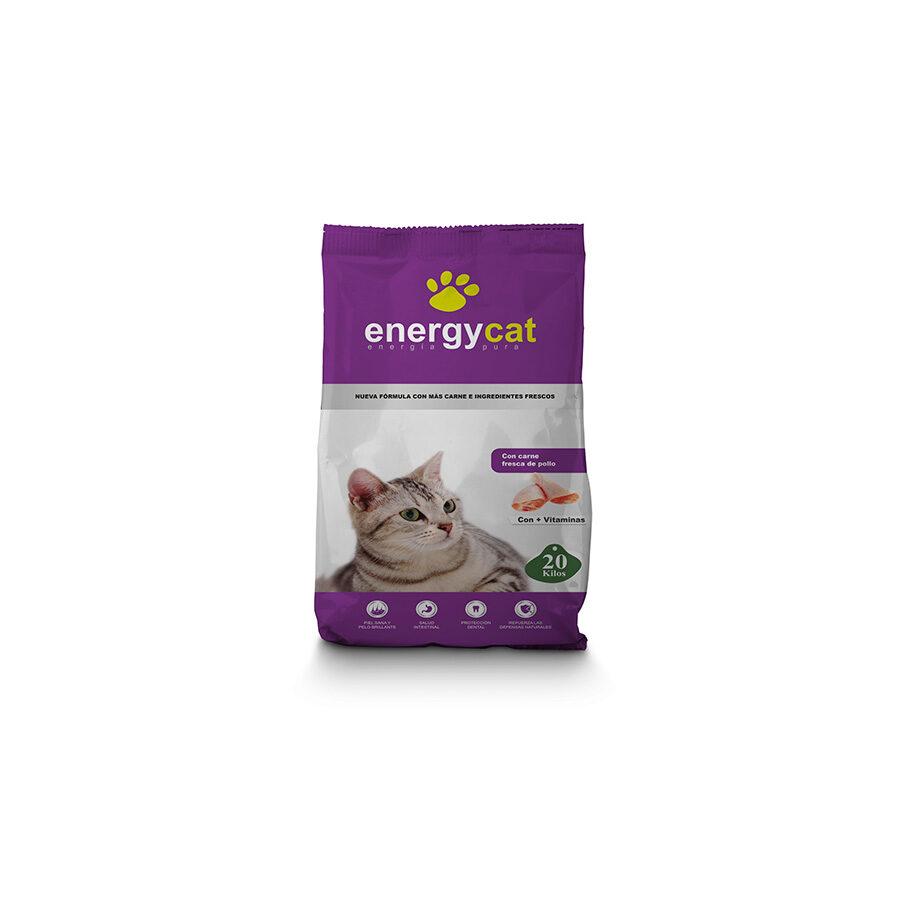 ENERGY-CAT-20-KG-
